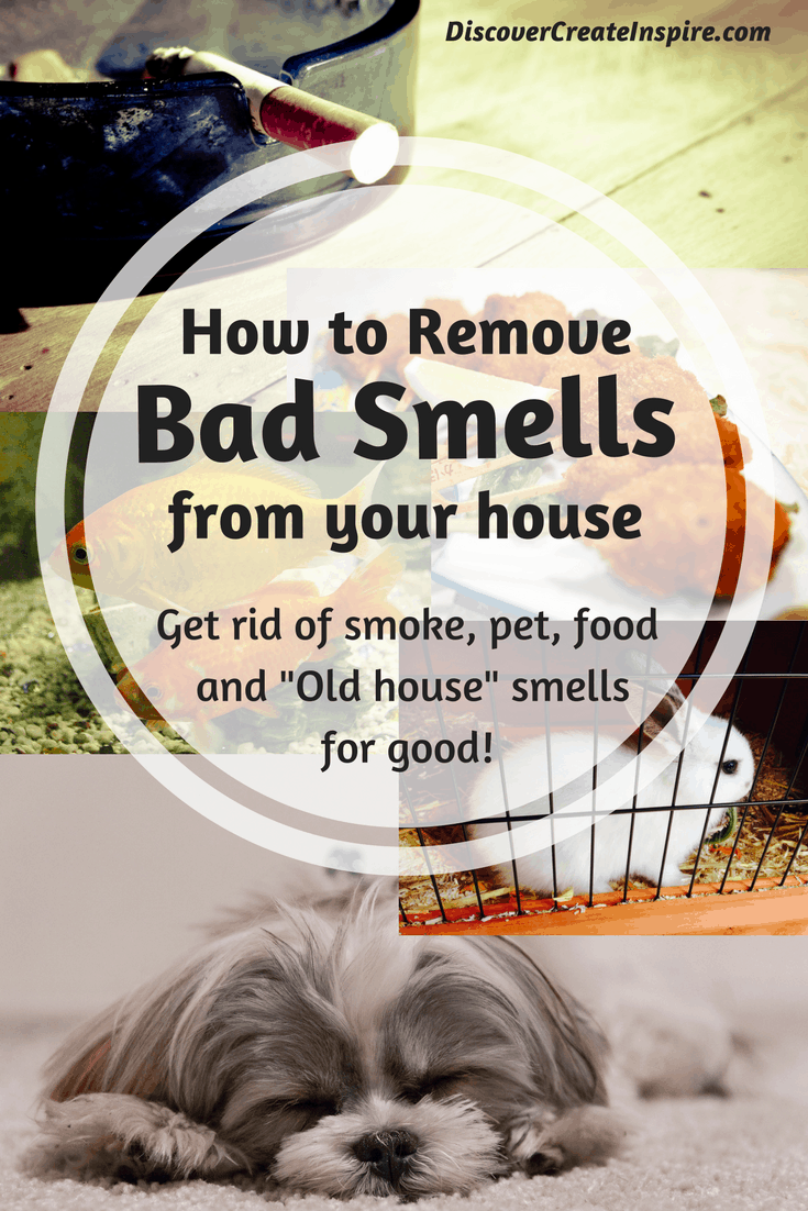 How To Remove Odors And Clean The Air In Your House