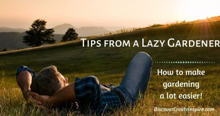 Tips from a Lazy Gardener