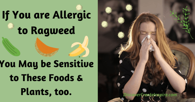 Plants to Avoid if You're Allergic to Ragweed