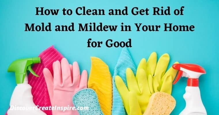 How to Clean and Get Rid of Mold and Mildew In Your Home for Good