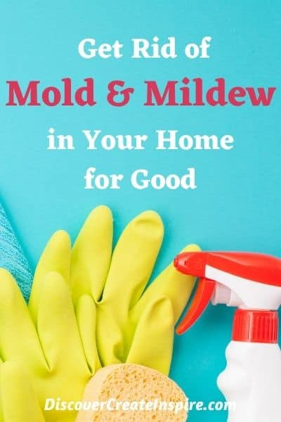 Natural and chemical cleaners that you can use to kill mold in your house.