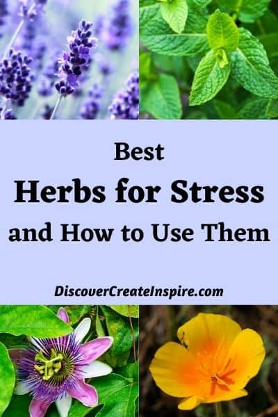 Best Herbs for Stress and How to Use them. DiscoverCreateInspire.com