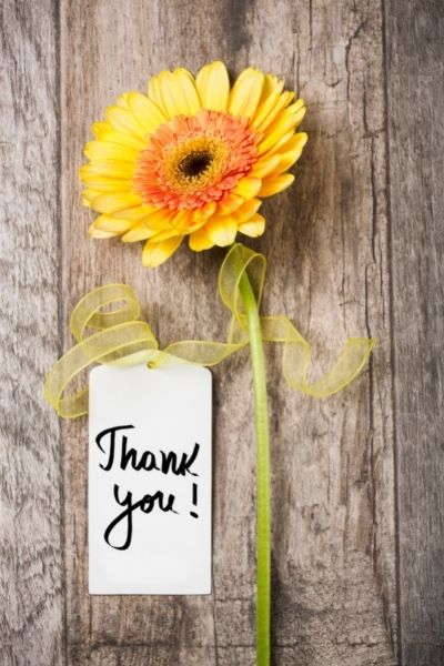 Flower, ribbon and thank you note